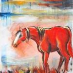 Cheval rouge en ciel bleu