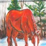 Cheval rouge en hiver
